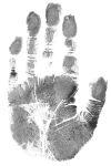 Charlie Allen's palm print