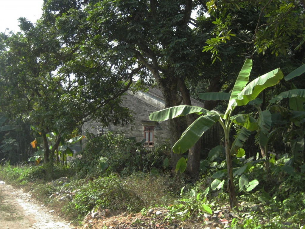 A scene in Shek Quey Lee village, where James Minahan lived from 1882 to 1908. This abandoned house was built with Australian remittances.